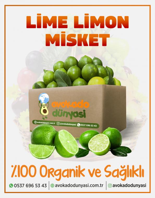 lime-2-min