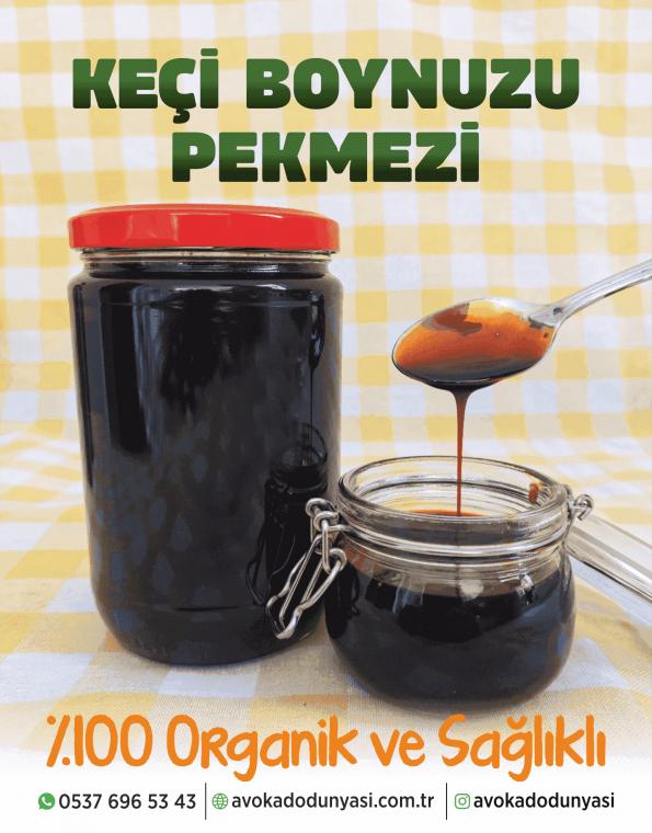 avokado-dunyasi-enucuz-pekmez-keciboynuzu
